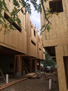 sustainable design build denver colorado west colfax 1254 perry during construction framing sheathing cantilever structural steel
