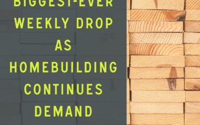 Lumber Prices Biggest-Ever Weekly Drop As Homebuilding Continues Demand