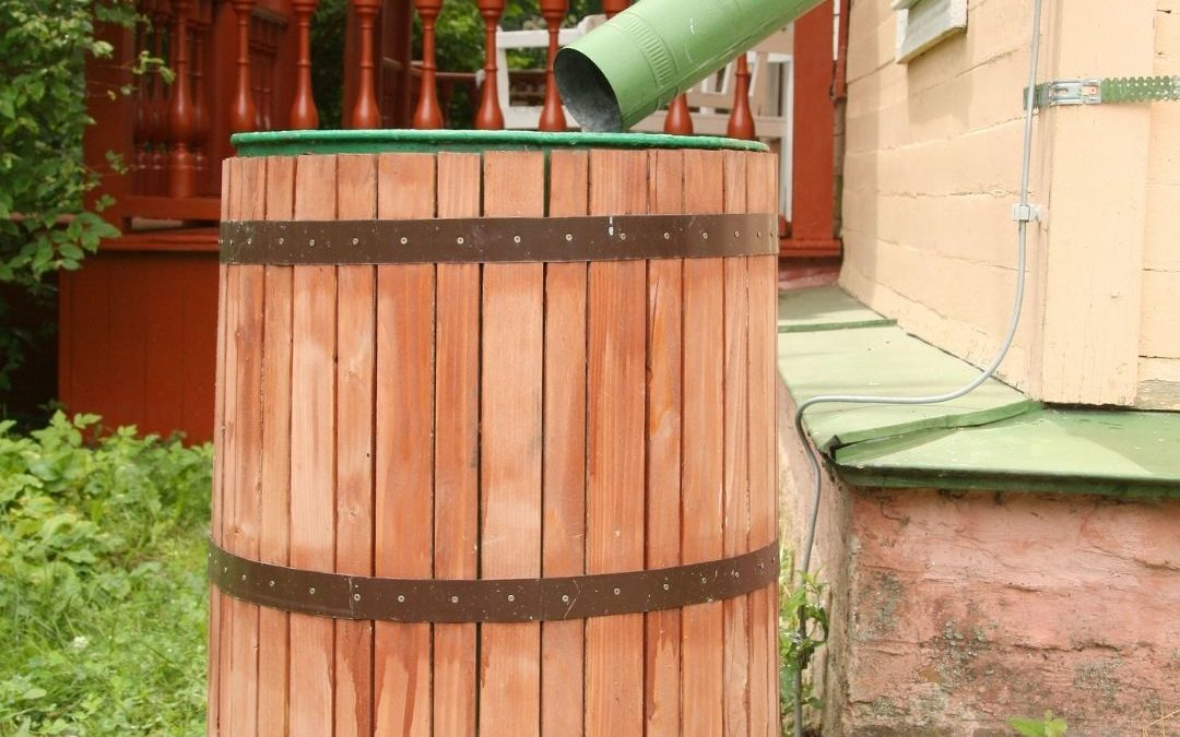 Sustainability at your home: Rain Water